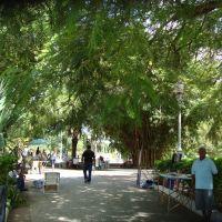Corumbá - plaza, Корумба