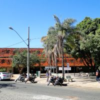 Main library - University of Uberlândia, Uberlândia, Brazil, Арха