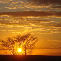 Sol Nascendo ☺, Арха