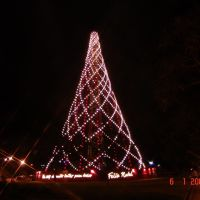 """Árvore de Natal Praça Gov.Israel Pinheiro 19º 57 26.99"""" S 43º 54 53.70"""" W, Белу-Оризонти"""