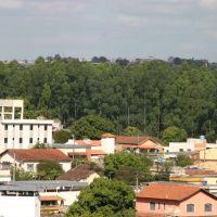 Porto Velho, Дивинополис