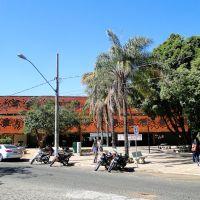 Main library - University of Uberlândia, Uberlândia, Brazil, Жуис-де-Фора