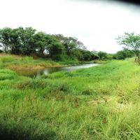 Pastagem com água no rio Taperoá, Жоао-Пессоа