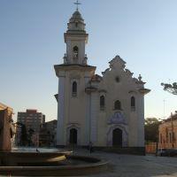 Igreja Nossa Senhora do Rosário, no fundo o pinheiro, árvore símbolo do Paraná - Curitiba, Куритиба