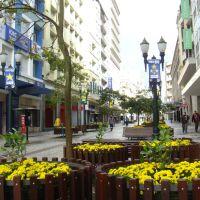 Rua das Flôres - Avenida Luiz Xavier - Curitiba - Paraná - Brasil, Куритиба