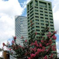 Curitiba, PR, Brasil., Куритиба