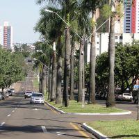 Londrina by Farina, Лондрина