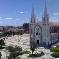 Catedral, Петролина