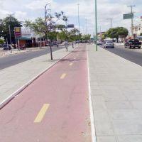 Avenida, Петролина