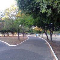 Parque, Петролина