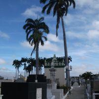 Cemetery - Petrolina, Brazil, Петролина