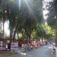 Praça São João Marcos, Параиба-ду-Сул