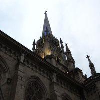 Catedral de Petrópolis, Петрополис