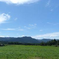 Paraíso do Sul/RS, Качоэйра-до-Сул