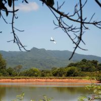 Foto feita na Propriedade de Edmar Radiske, em Linha Varzea, Paraíso do Sul - RS, Рио-Гранде