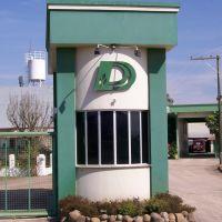 Dicow, Сантана-до-Ливраменто