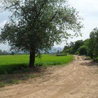 estrada  de  lavouras, Сантана-до-Ливраменто