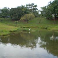 LAGOA NO PARQUE VITORIA REGIA - BAURU, Бауру