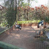 Zoológico de Bauru, Бауру