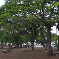 Praça Da Estação Rodoviária - Jaú, Жау