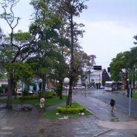 Praça Com Chuva, Жау