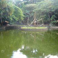 Lago no Bosque dos Jequitibás, Кампинас