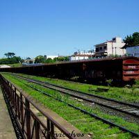Vagões no pátio da Estação ferroviária de Catanduva, Катандува