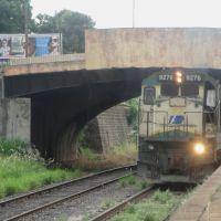 Trem passando pela estação ferroviária de Catanduva. Ao fundo, o viaduto da Rua Sete de Setembro, Катандува