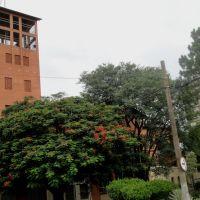 Catedral de Nossa Senhora Aparecida em Catanduva, Катандува