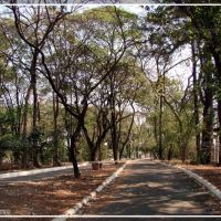 Limeira - Foto e 3D: Fábio Barros (www.cidade3d.uniblog.com.br), Лимейра
