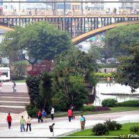 Vale  do anhangabau e Viaduto Sta Ifigenia -  Foto: Fábio Barros(www.cidade3d.blogspot.com.br), Сантос