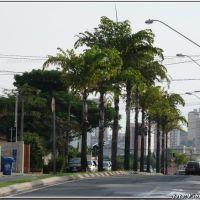 Av. Pereira da Silva - Sorocaba - Foto: Fábio Barros  (www.cidade3d.uniblog.com.br), Сорокаба