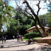 Zoo de Sorocaba - Foto: Fábio Barros (www.cidade3d.uniblog.com.br), Сорокаба