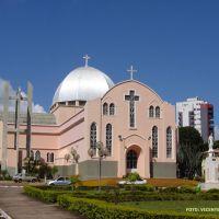 Araguari (MG) Matriz do Senhor Bom Jesus, Арагуари