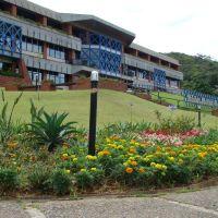Prefeitura de Joinville II, Жоинвиле