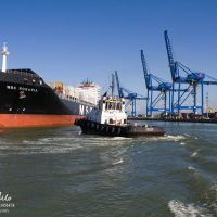 MSC Rosaria, gantries and tug Caillean 1, Итажаи