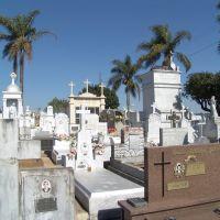 Cemitério Cruz das Almas, Тубарао