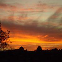 A Festive Sunset, Тубарао