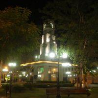 Coluna da Hora (Big Ben), Собраль