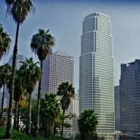 Palms and skyscrapers in LA, Лос-Анджелес