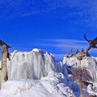 Eagles and Mountain Lion, Айдахо-Фоллс