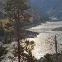 Early morning on the Salmon River downstream from the Lake Creek Bridge, Барли