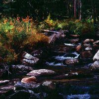 Victor Creek on the Loon Lake trail, Маунтейн-Хоум