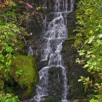 Tumble Creek near the Lochsa River, Рексбург