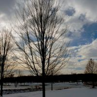Iowa City December sky, Асбури