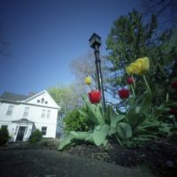 Pinhole, Iowa City, Spring 3 (2012/APR), Блуэ Грасс