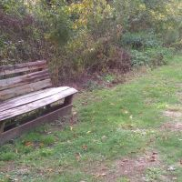 High Trestle Trail Bench 8, Вудвард