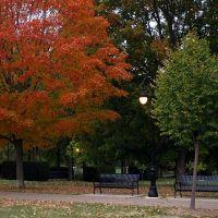 Vander Veer Park, Давенпорт
