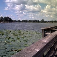 Lillies from the pier at Carter Lake, Картер-Лейк