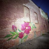 Pinhole, Iowa City, Graffiti (2012/APR), Осадж